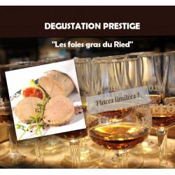 Dégustation rhums et foies gras